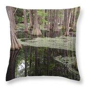 Swirls In The Swamp Throw Pillow