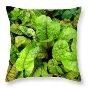 Swiss Chard In A Vegetable Garden 4 Throw Pillow