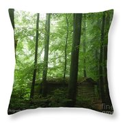 Swiss Forest Cabin Throw Pillow