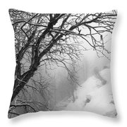 Swiss  Snow Fall Throw Pillow