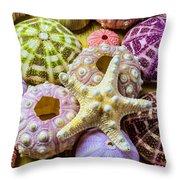 Syarfish And Sea Urchins Throw Pillow