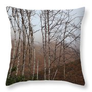 Sycamore Canyon Trail In Rain Throw Pillow