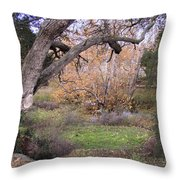 Sycamore Grove Fall Throw Pillow