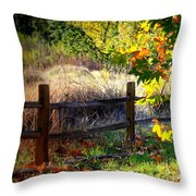 Sycamore Grove Fence 1 Throw Pillow