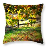 Sycamore Grove Fence 2 Throw Pillow