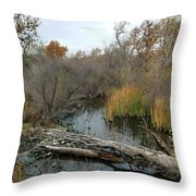 Sycamore Grove Throw Pillow
