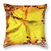 Sycamore Leaf  In Fall Throw Pillow