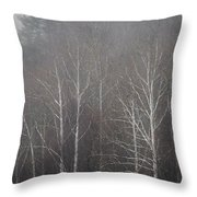 Sycamore Series 5 Throw Pillow
