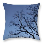 Sycamore Silhouette Throw Pillow