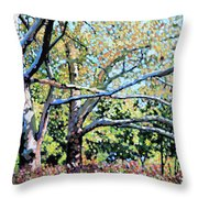Sycamore Trees At The Zoo Throw Pillow