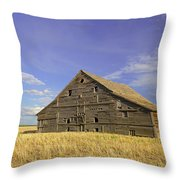 Symbol Of Days Gone By Throw Pillow