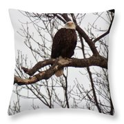 Symbol Of Freedom Throw Pillow