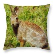 Symbol Of The Rabbit Throw Pillow