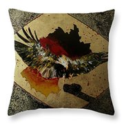 Symmetrie Und Symbolik Deutschland  Throw Pillow