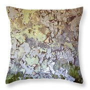 Synthesis-1 Throw Pillow