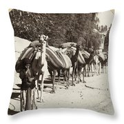 Syria: Caravan, C1900 Throw Pillow