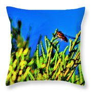 Syrphid Fly  Throw Pillow