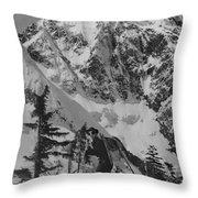 T-204401 Ron Nicolli Throw Pillow
