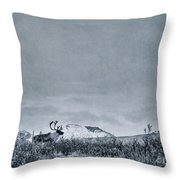 Land Shapes 38 Throw Pillow by Priska Wettstein