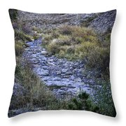 Dry Creek Throw Pillow