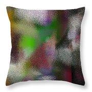 T.1.1007.63.7x5.5120x3657 Throw Pillow