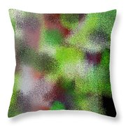 T.1.1103.69.7x5.5120x3657 Throw Pillow