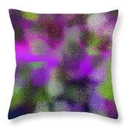 T.1.1112.70.3x4.3840x5120 Throw Pillow