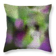 T.1.1115.70.5x3.5120x3072 Throw Pillow
