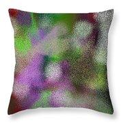 T.1.1119.70.7x5.5120x3657 Throw Pillow