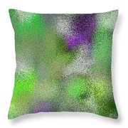 T.1.1946.122.3x5.3072x5120 Throw Pillow