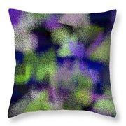 T.1.444.28.4x5.4096x5120 Throw Pillow