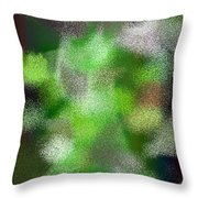 T.1.622.39.5x7.3657x5120 Throw Pillow