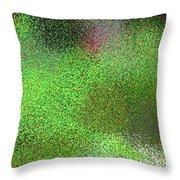 T.1.628.40.1x3.1706x5120 Throw Pillow