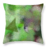 T.1.630.40.2x3.3413x5120 Throw Pillow