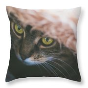 Tabby Cat Looking From Beneath A Blanket  Throw Pillow