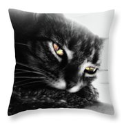 Tabby Cat Selective Color Throw Pillow