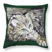 Tabby Cat With Cricket Trinket Box Throw Pillow