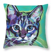 Tabby Chic Throw Pillow