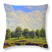 Table Mountain In Bloom Throw Pillow
