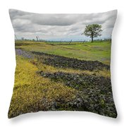 Table Mountain Landscape Throw Pillow