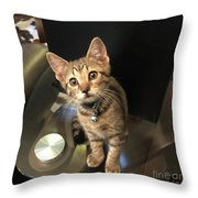 Tabletop Dom Throw Pillow