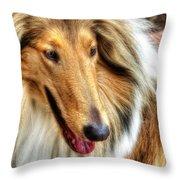 Taffy Collie Throw Pillow