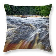 Tahquamenon Lower Falls Upper Peninsula Michigan Vertical 01 Throw Pillow
