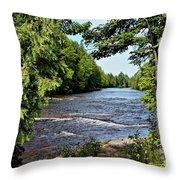 Tahquamenon River Throw Pillow
