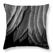 Tail Feathers Abstract Throw Pillow