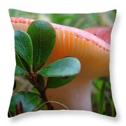 Take A Moment...be Mindful. Throw Pillow