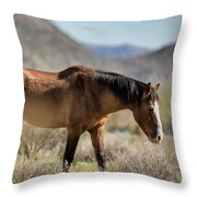 Take  A Walk On The Wildside  Throw Pillow