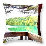 Take It In  Throw Pillow