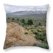 Take Me To The Mountains Throw Pillow by Margaret Pitcher