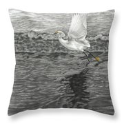 Take Off At Dusk - The Rendering Throw Pillow